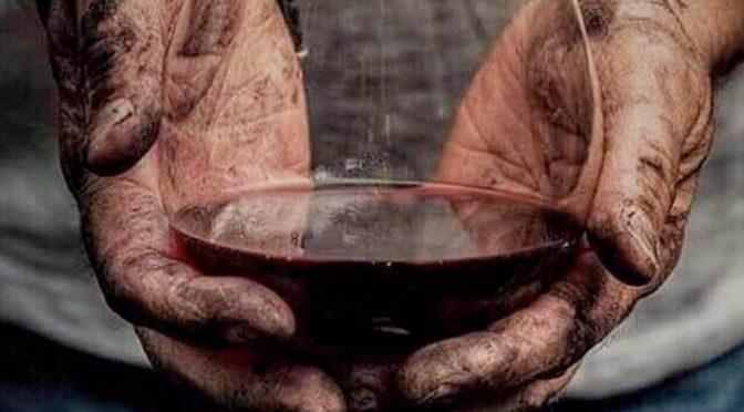 """Presentado 'Vinos de España', el """"vademécum"""" de los aromas del vino español"""