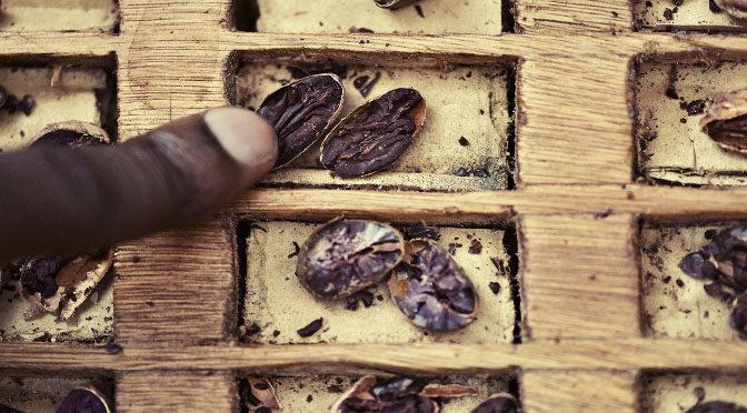 Chocolates con historia, 100% trazables y 100% sostenibles